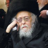 What was HaRav Elyashiv Like as a Baby?
