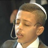 The Crying Bar Mitzvah Boy's Song (4-Minute Moving Video)