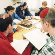 Why I Love Teaching Israelis by Yocheved Cohen