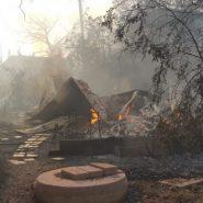 The Moshav Burned Down, What Now?