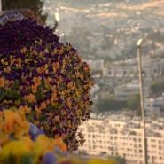 Waiting for Elijah in Jerusalem (3-Minute Music Video)