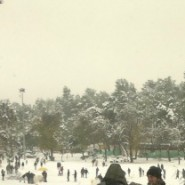 Jerusalem's Biggest Blizzard in 2 Decades