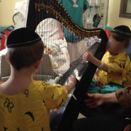 Gross Brothers play Harp, to be Released from Hospital over Next Few Weeks
