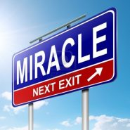 The Miracle of Little by Little