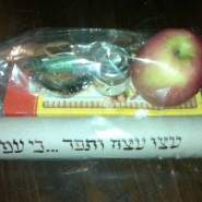 The Most Incredible Mishloach Manot I Received this Purim