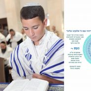 My Son's Bar Mitzvah, Under Fire by Dalia Harel