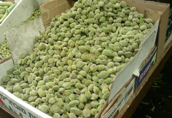 A pre-Pesach delicacy: unripe green almonds. Sounds unappealing? You're right:)
