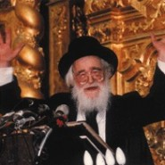 Rav Shach and the Chassid