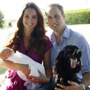 Prince William's Top Priorities: Wife, Baby, and… Dog?