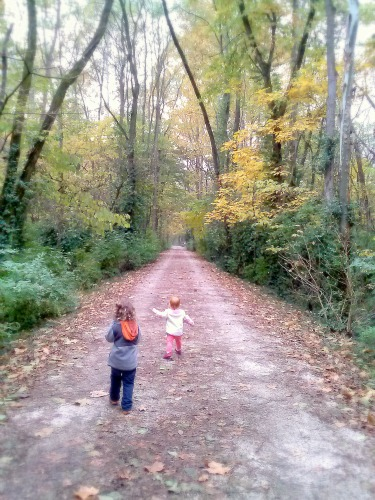 For the privilege of seeing children and grandchildren  going along the path I have chosen to walk on