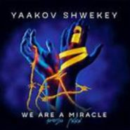 We are a Miracle –Yaakov Shwekey (5-Minute Music Video)